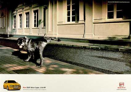 chienkipisse2001.jpg