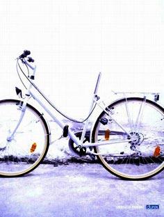 gaycycle2002.jpg