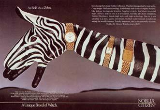 zebre1986.jpg