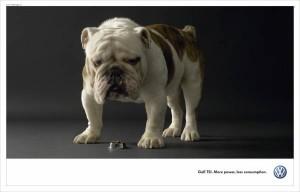 powerdog2006