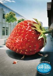 fraise2005