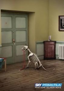 chienskelet2007