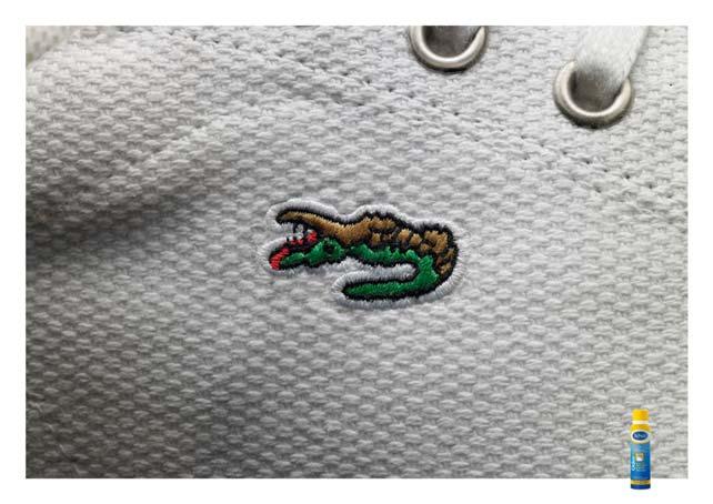 crocodile2008