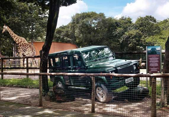 zoo2009