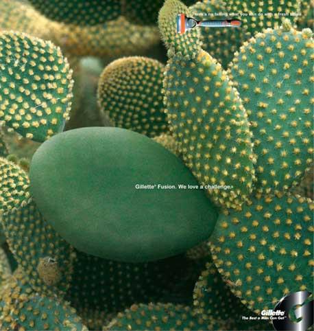 cactus2009
