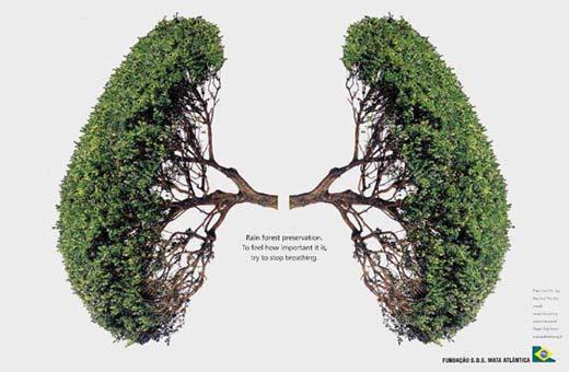 poumons1998