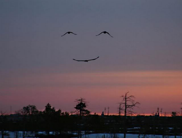 A_Smile_From_God