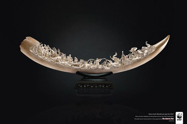 ivory2010bates