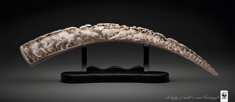 ivory2010ogilvy