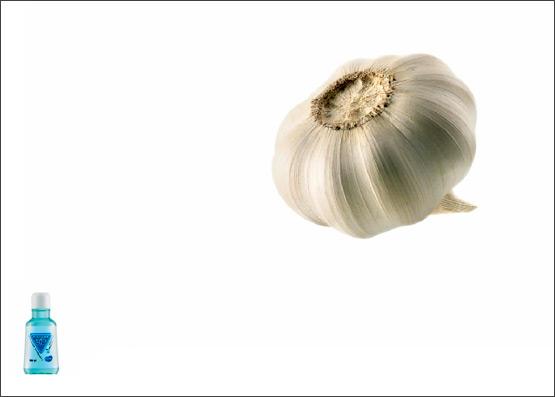 garlic2010h