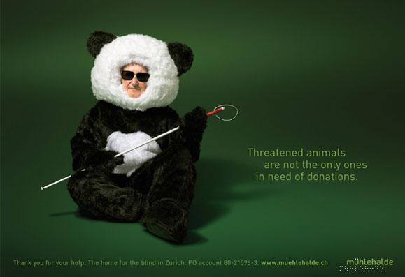 panda2009