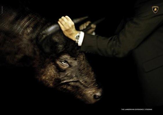 bull2004