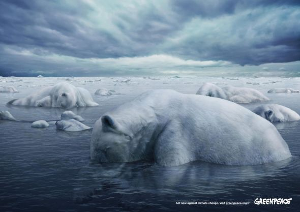 greenpeace-polar-bears1.preview
