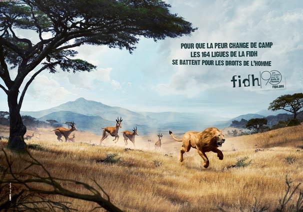 lionrun2012