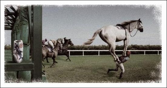 horse2004