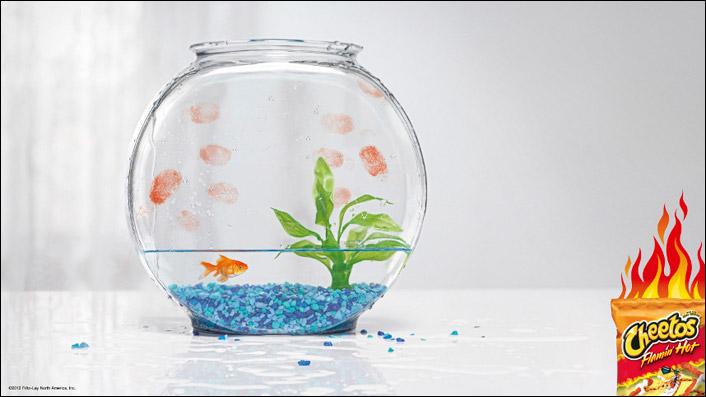 fishbowl2013