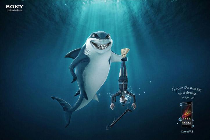 shark2014