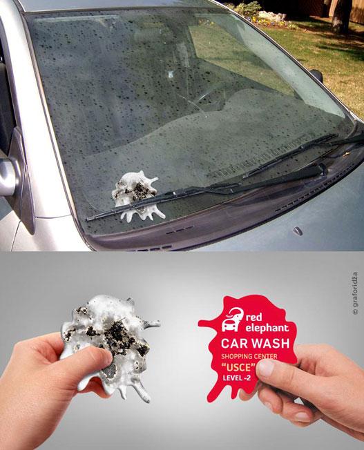 car-wash-bird-shit-2016